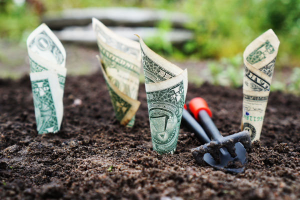 How Effective are Monetary Incentives?